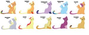 Pony warriors