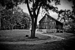 Barn, Central Lake, Michigan by richardwhisner
