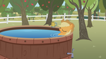Applejack's Down Time