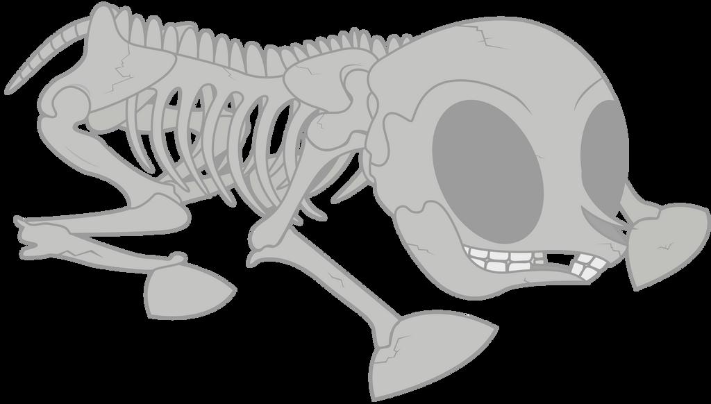 Pony Skeleton
