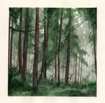 Forest [Place-holder name]