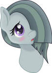 [Marble Pie] - Shy as a mouse.