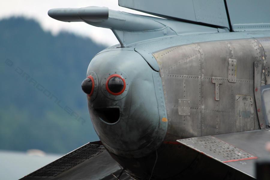 McDonnell Douglas F-4 Phantom IIN (interceptor y cazabombardero supersónico, biplaza, bimotor y de largo alcance USA) - Página 2 F4_phantom_grin_by_dragonlear-d4cm6ez