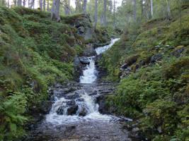 Stream IV by Wylderness