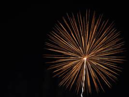 Firework Dandelion