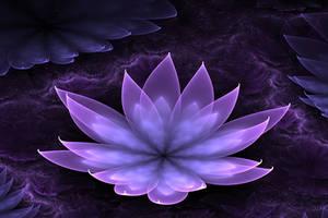 Lotus by jadenkanan