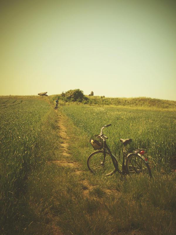 Bike by NSHNSH