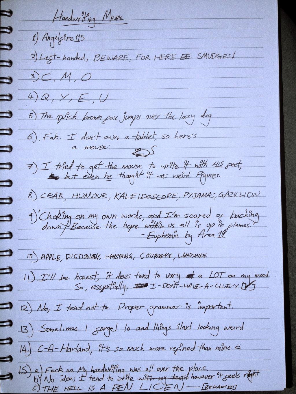 Handwritingmeme by Angelfire115