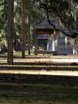 slave cabins at evergreen.