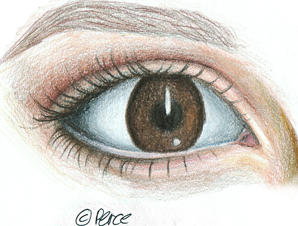 Hermine Granger's eye by 0137Amy0137