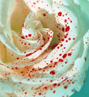 Rose Lit by ELaiNes-DarkRoom