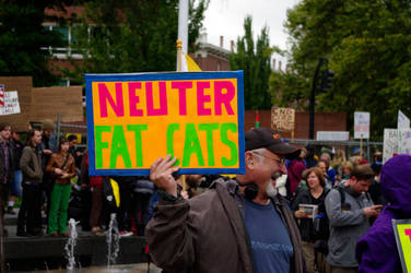 Neuter Fat Cats
