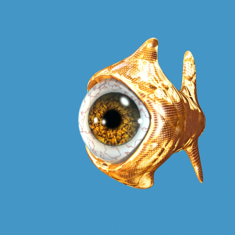 big eye goldfish by inmc
