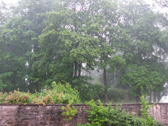 rainy day by inmc