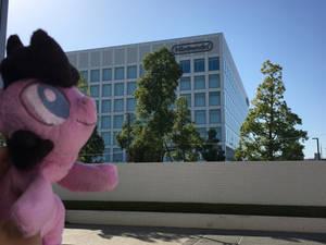 Cordy in Japan ~ Nintendo HQ, Kyoto