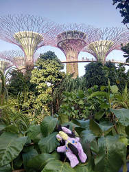 Cordy in Singapore ~ Gardens by the Bay