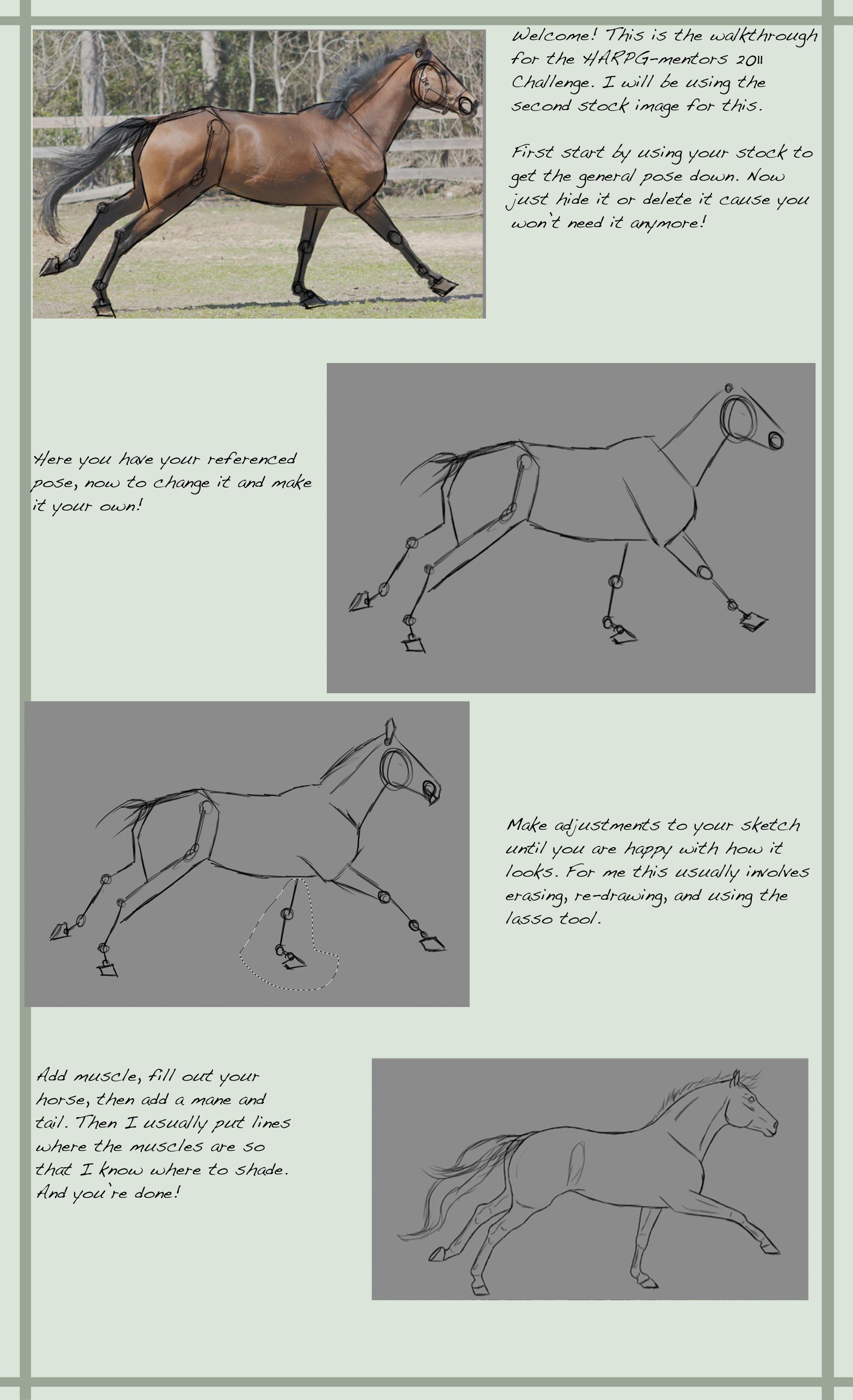 Learn through tracing by CasablancaStudios