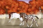 Fall Foals by CasablancaStudios