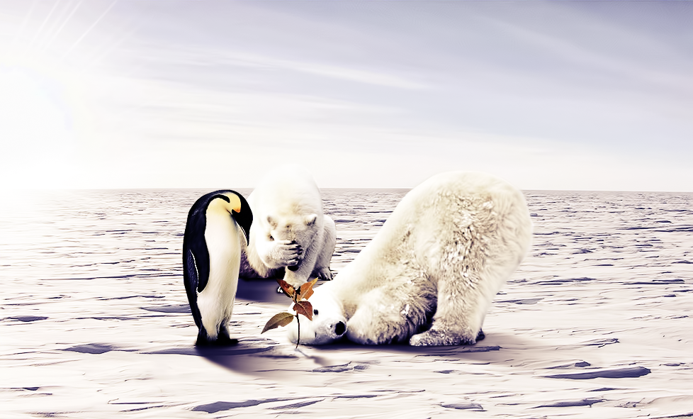 Global Warming II