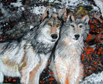 Two Winter Wolves