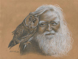 The Wizard and his Owl