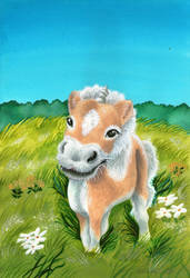 Toby the Pony II by Helviriitta