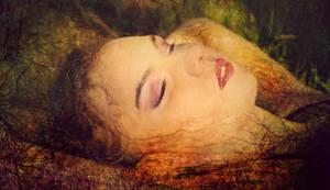 Organic dreams