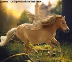 Pony2 by starfire50