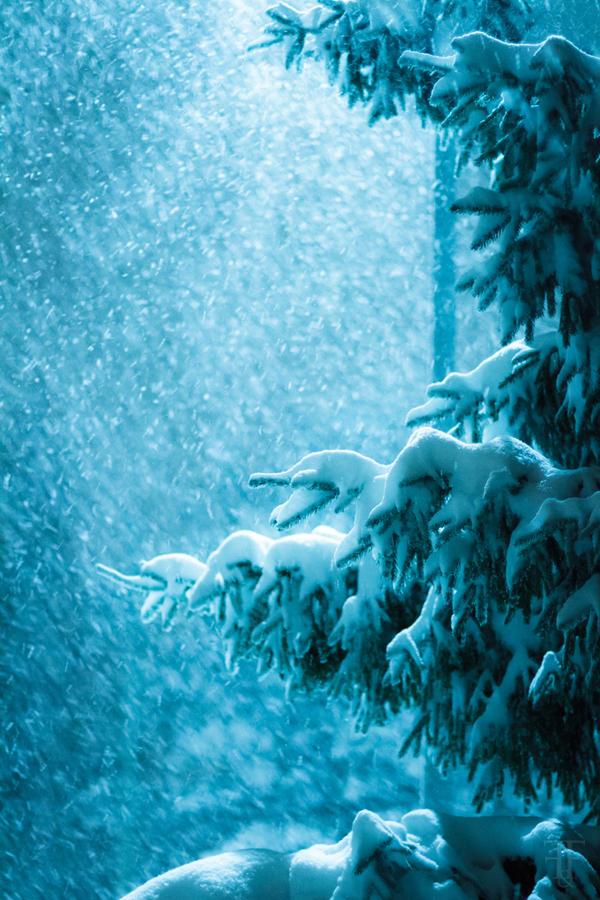 Snow Returns 2 by UnworthyReturn