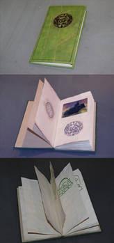 Numinous80: Relto Book