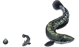.:Snakehead Fish:. by XenomorphicDragon