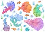 2017 - 05 - Tattoo Fishes
