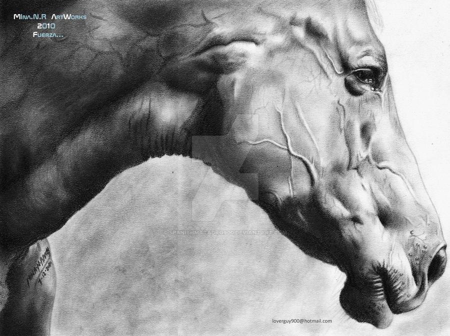 Fuerza... by spanishmatadro900