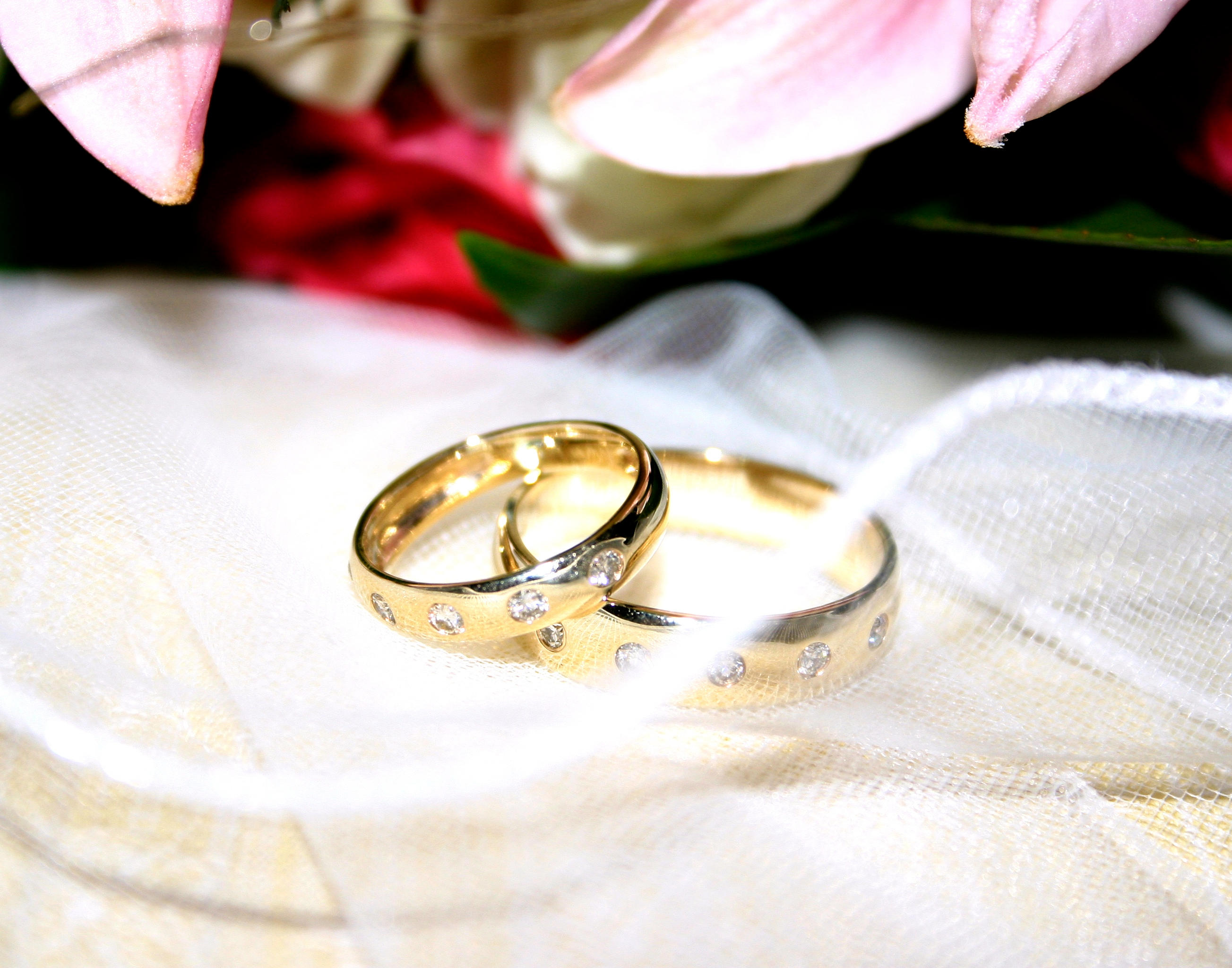 Remarkable Flowers and Wedding Rings 2607 x 2048 · 1511 kB · jpeg