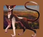 GAY CAT   Tallstar