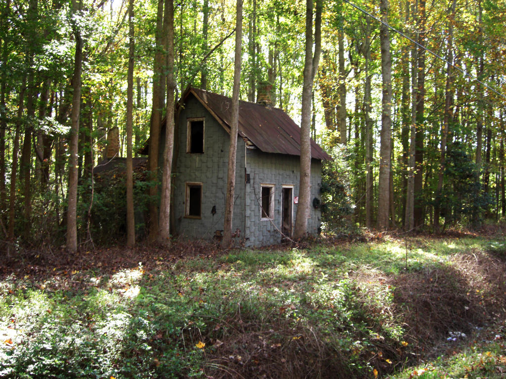 Little blue house in the woods 1 by chershow on deviantart - The house in the woods ...