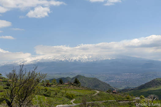 Interior Sicily 19