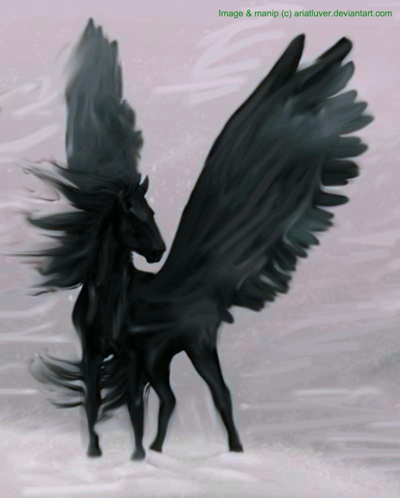 Black Pegasus  Deathly    by AriatluverBlack Pegasus