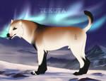 ID 6798 by TotemSpirit