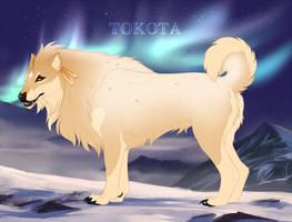 Nyla 6957 by TotemSpirit