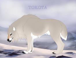 Hidden Treasure 8079 by TotemSpirit