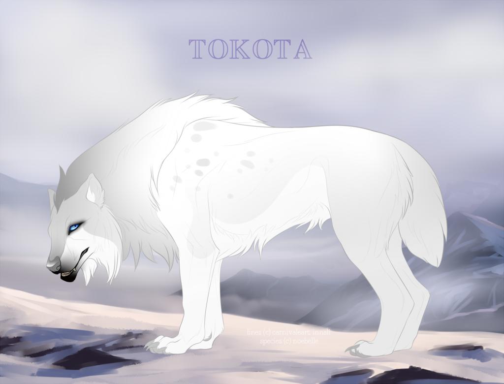 Emer 10252 by TotemSpirit