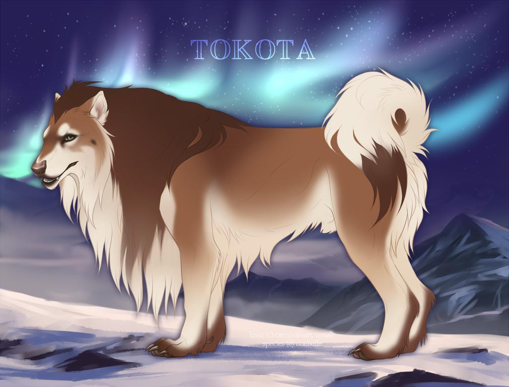 Matanuska 20639 by TotemSpirit