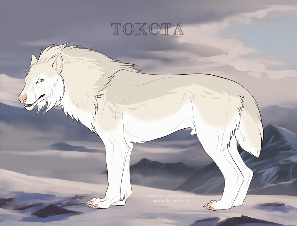 Snowrapids 23707 by TotemSpirit