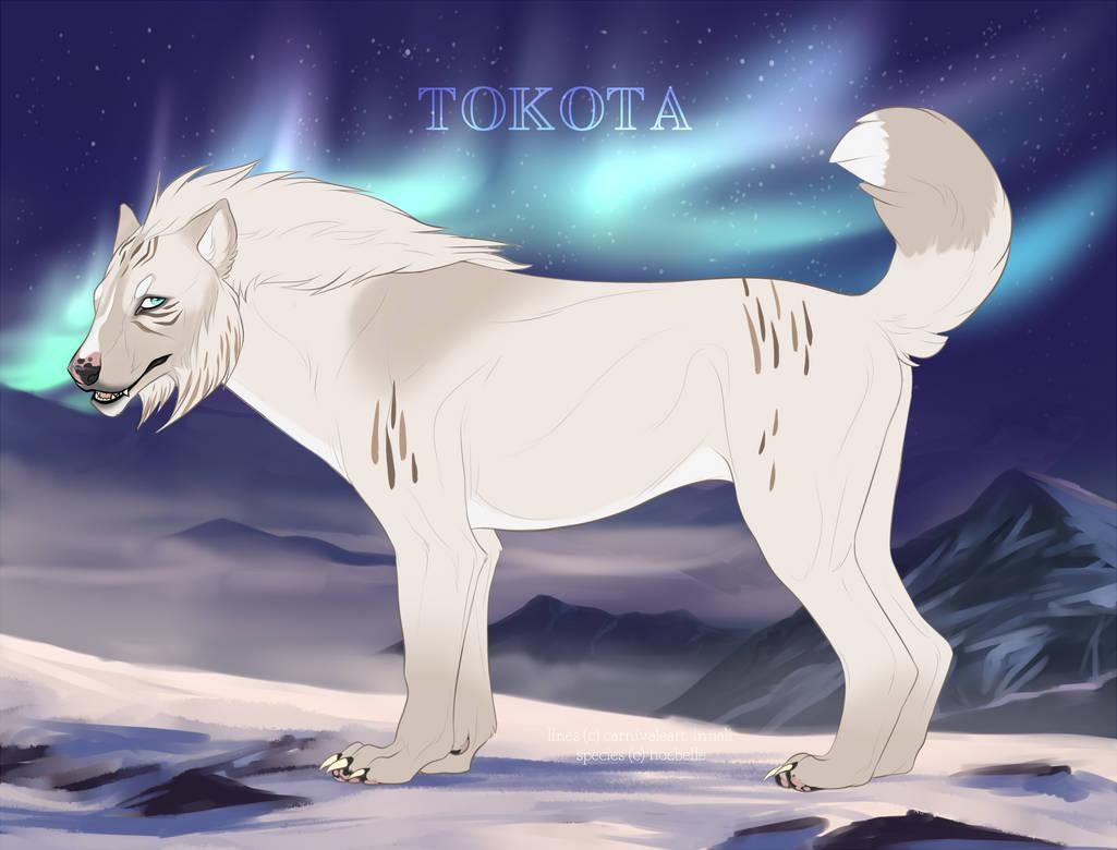 Keeonah 28444 by TotemSpirit