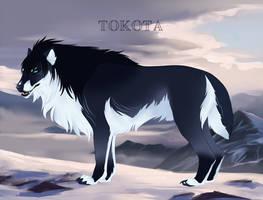 Noctis 30525 by TotemSpirit