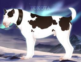 Finna 35854 by TotemSpirit