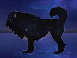 Rune 37334 by TotemSpirit