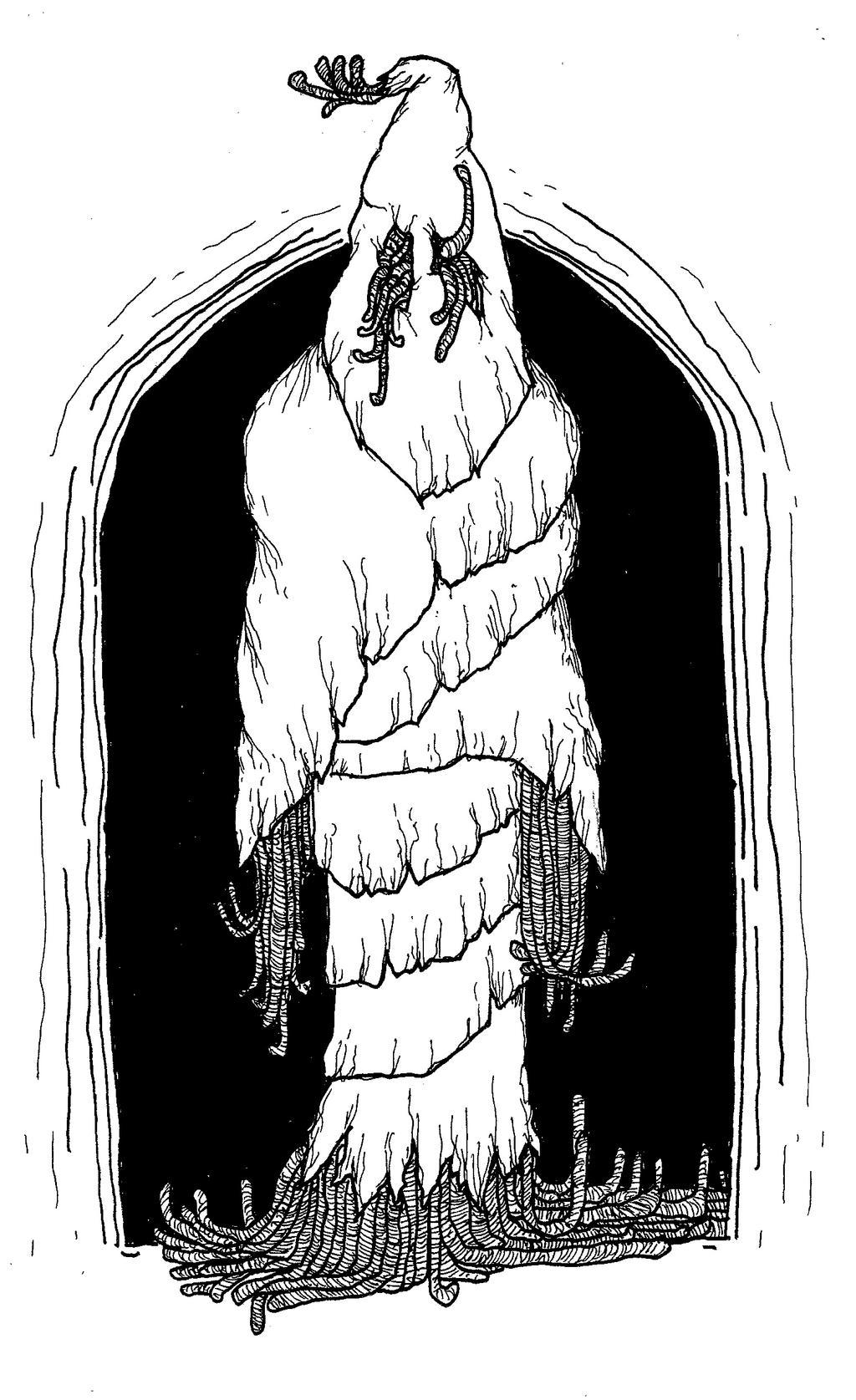 Worm That Walks by mraston