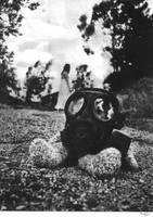 Bear with Gaz Mask Finished by BrunoEpeb